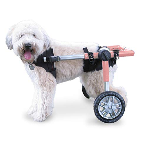 Walkin' Wheels Dog Wheelchair - for Medium Dogs 26-49 Pounds -...