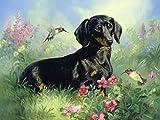 Pintura de diamante perro 5D DIY animal diamante bordado kit de punto de cruz hecho a mano decoración del hogar pintura A10 50x70cm