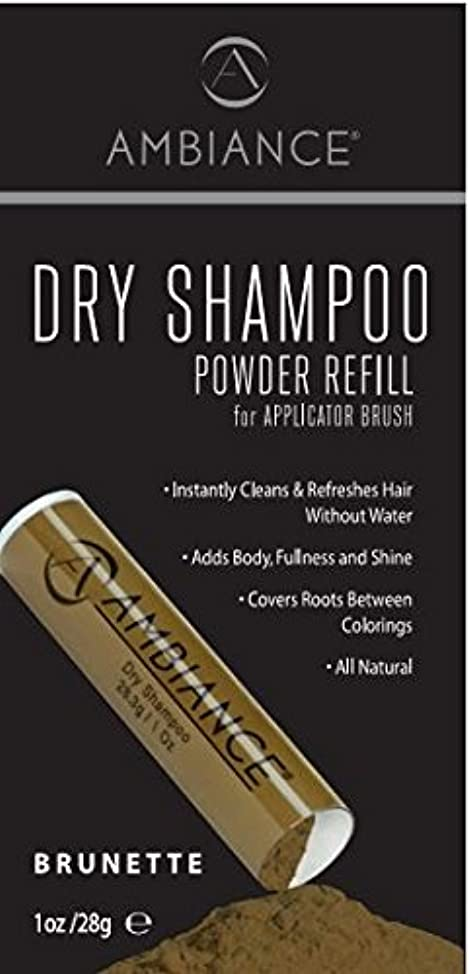 Ambiance Dry Shampoo Refill (Brunette)/ Volumizing Tinted Powder To Refill Your Existing Ambiance Dry Shampoo Applicator Brush