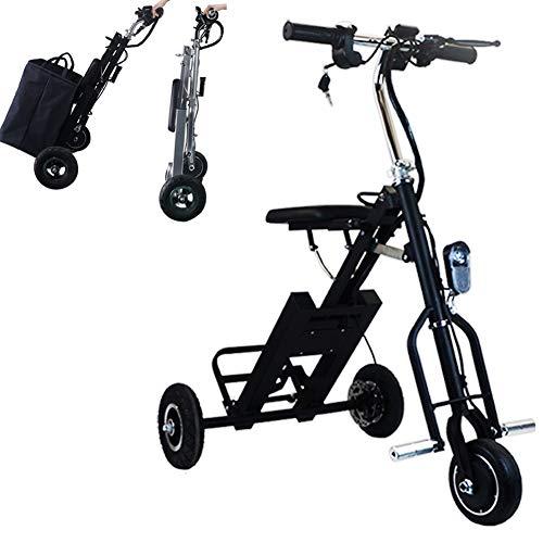 Bicicletas Eléctricas Plegable para los Adultos, Peso ligero Ebike Triciclos Patinetes Eléctricos con 36V 250W 5AH Batería de Litio-Ion, Eje trasero de 60cm, para Asistencia de Movilidad Y Viajes