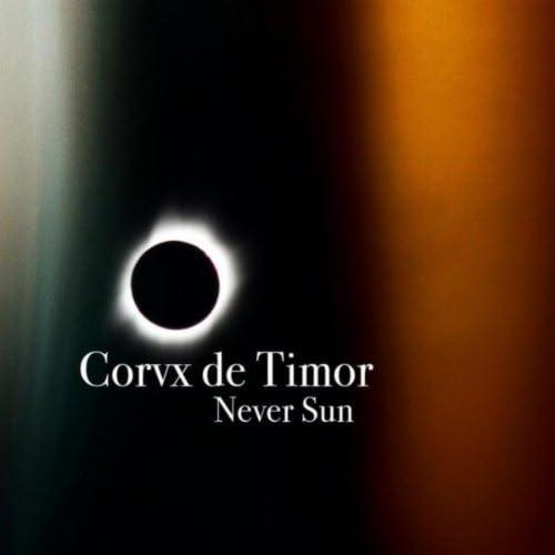 Corvx De Timor