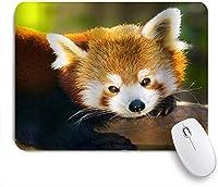 GUVICINIR マウスパッド 個性的 おしゃれ 柔軟 かわいい ゴム製裏面 ゲーミングマウスパッド PC ノートパソコン オフィス用 デスクマット 滑り止め 耐久性が良い おもしろいパターン (アライグマかわいい動物の野生動物)