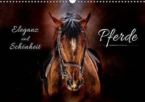 Eleganz und Schönheit - Pferde (Wandkalender 2021 DIN A3 quer)