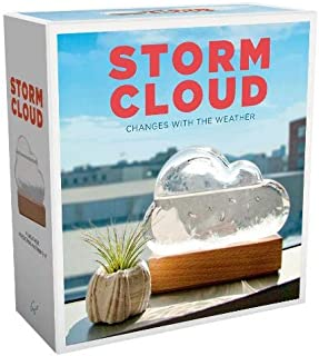 Storm Cloud: A Weather Predicting Instrument (Weather Predictor, Fun Cloud-Shaped Barometer)