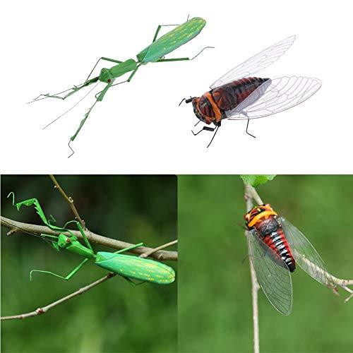 Aomerrt 6pcs Cigale Insectes Réalistes Figurines Jardin Sculpture Maison/Bureau/Ornement en Arbre