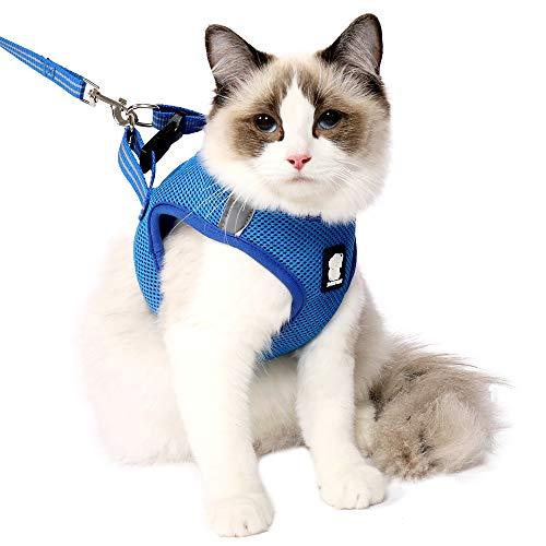 Set di Pettorina e guinzaglio per Gatti, a Prova di Fuga, Riflettente, Regolabile, in Morbida Rete, Imbottita, per Cuccioli, Gattini, Passeggiate all'aperto