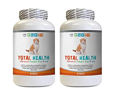 cat Gum Treats - CAT Total Health Formula - Hair Skin Teeth Eye Urinary Health - Immune Boost - Vitamins for Cats Senior Cats - 2 Bottles (120 Tablets)