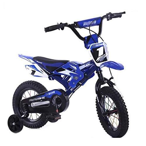 Huachaoxiang Bicicletas Niños, Motocicleta Diseño De Bicicletas Los Niños con Guardabarros Y V-Brake para Niños Niñas,Azul
