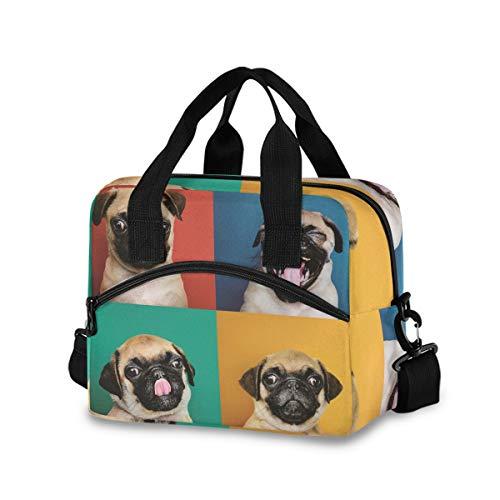 Cachorro Pug Bolsa de almuerzo para mujeres y hombres, bolsa de almuerzo aislada con correa de hombro desmontable y asa de transporte, bolsa enfriadora reutilizable para el trabajo, escuela, picnic
