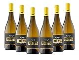Vins&Co Barcelona Vino Blanco Xarel·Lo 2017 – Pack 6 Botellas – Fermentación, Crianza De 8 Meses – Selección Vins&Co - 750 ml