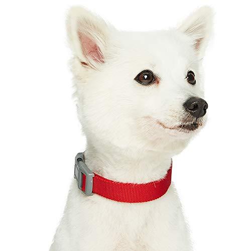 UMI. Essential Classic - Collar para Perros L, Cuello 45-66 cm, Collares Ajustables para Perros (Rojo)