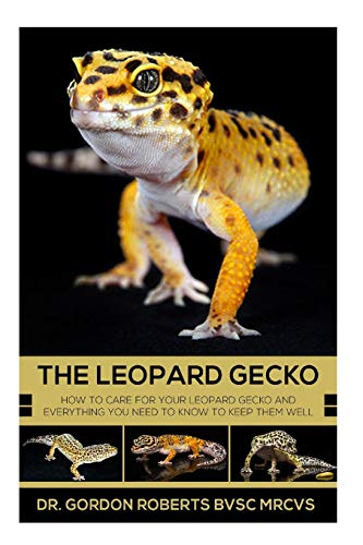 Best Leopard Gecko Books for Gecko Lovers [2021] 5