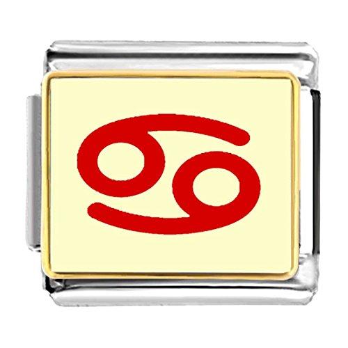 GiftJewelryShop Gold Plated Cancer Zodiac charm Bracelet Link Photo Italian Charm Bracelets