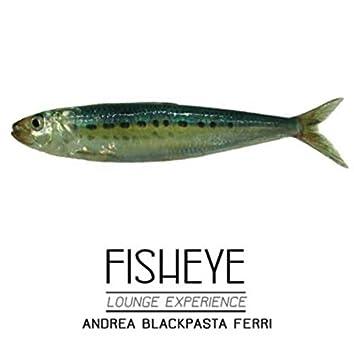 Fisheye - Lounge Experience