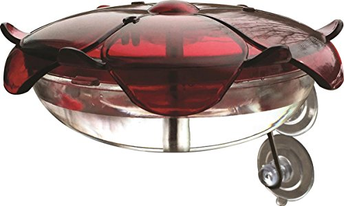 Droll Yankees RS-3WC FBA_RS-3WC Hummingbird Feeder, Window Mounted Outdoor Fe, 5 oz, Ruby/Clear