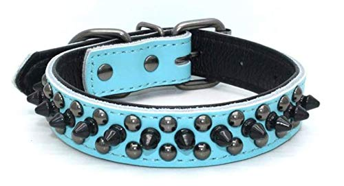 Rachel Pet Products Rivet Spiked Studded Genuine Leather Dog Collar for Small or Medium Pet (1.4-15', Blue)