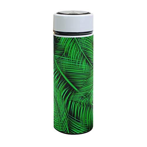 Emoya Botella de agua de acero inoxidable de 500 ml, rama de palma verde tropical y hojas aisladas al vacío, sin BPA, a prueba de fugas, doble pared, boca ancha para bebidas frías y calientes, 17 onzas