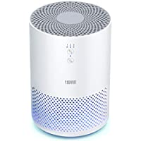 Toppin Hepa Air Purifier with Filter Night Light