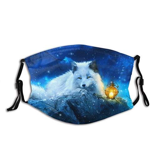 Arctic Fox Liegend bei Nacht Gesichtsmaske Schal, Waschbare Wiederverwendbare Bandanas mit 2 Filtern, Für Herren & Damen Outdoor