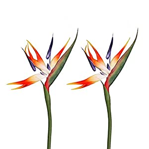 Qingriver 2 Pcs Bird of Paradise Artificial Flowers Plants for Home Garden Wedding Party Decor