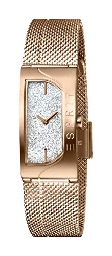 Esprit Womens Analogue Dial Metallic Watch - ES1L045M0225_Silver_Free Size