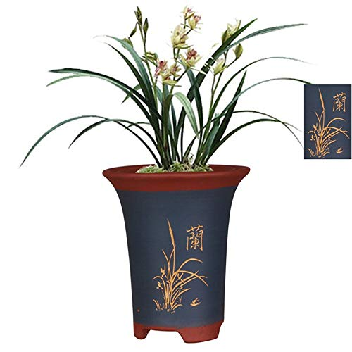High-Grade Plant pots, fine Purple Sand pots, Breathable Drainage Holes, Orchid Carving + Chinese Character Basin Pattern Design, Indoor/Outdoor, Blue, Two Sizes can Choose (Size : L)