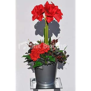 Silk Blooms Ltd Artificial Red Fresh Touch Amaryllis Floral Arrangement w/Roses and Berries