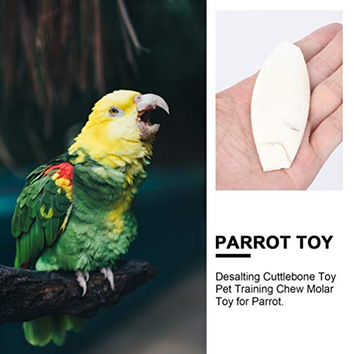 EXCEART 10 Pcs Bird Cuttlebone Toy Mineral Lava Blocks Trimming Chew Toys Pumice Stones for Cockatiels Parrots Budgies and African Gray