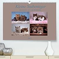 Kleine Stubenstiger (Premium, hochwertiger DIN A2 Wandkalender 2022, Kunstdruck in Hochglanz): Zusammen ist`s am Schoensten (Monatskalender, 14 Seiten )