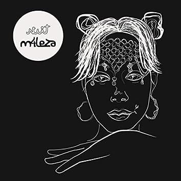 Nuit (feat. Máximo Disfrute)