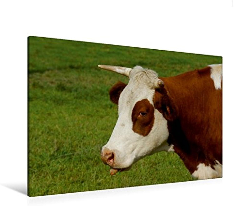 Calvendo Premium Textil-Leinwand 120 cm x 80 cm quer, Kuhzunge   Wandbild, Bild auf Keilrahmen, Fertigbild auf echter Leinwand, Leinwanddruck  Kühe und Haustiere Tiere Tiere B01KRQADEY Gewinnen Sie das Lob der Kunden | Sehen Sie die Welt aus der Pers