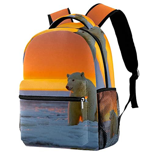 XiangHeFu Mochila escolar para niñas niño caminata al aire libre bolsa de viaje mochila Alaska animales oso polar nieve Mochila estampada