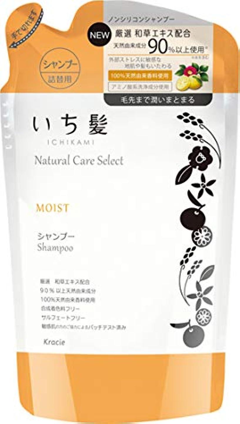 機密アンデス山脈クローゼットいち髪ナチュラルケアセレクト モイスト(毛先まで潤いまとまる)シャンプー詰替340mL シトラスフローラルの香り
