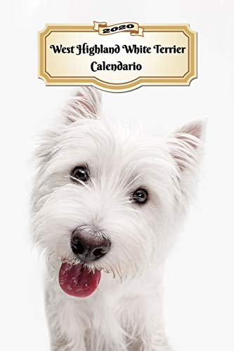 2020 West Highland White Terrier Calendario: 107 Páginas | Tamaño A5 | Planificador Semanal | 12 Meses | 1 Semana en 2 Páginas | Agenda Semana Vista | Tapa Blanda | Perro