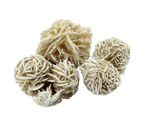 aquasensishop budawi® - Sandrosen Wüstenrosen gefrostet ca. 3-4 cm, Set mit 3 Stück