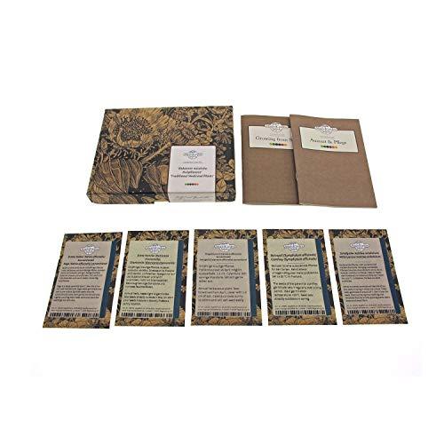 Bekannte nützliche Heilpflanzen - Samen-Geschenkset mit 5 traditionellen Arzneipflanzen für den Garten