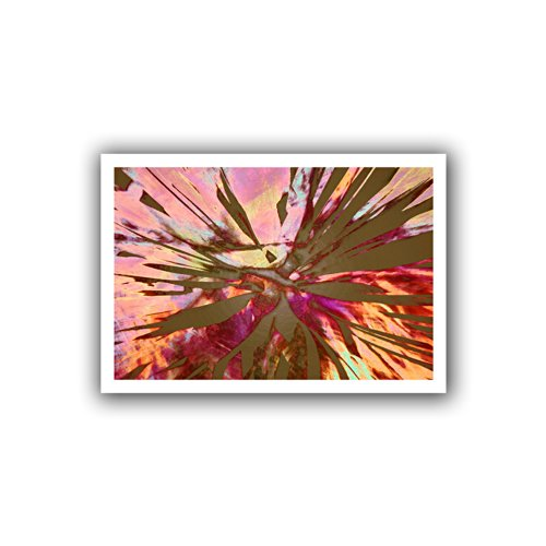 ArtWall Appealz Dean Uhlinger Abini Succulent Removable Wall Graphic 24 by 36-Inch