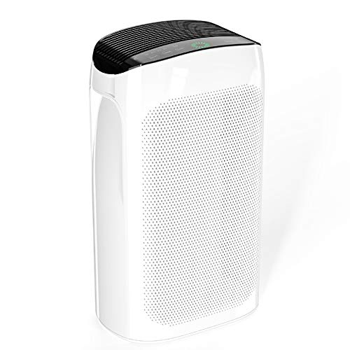 Air Purifiers for Home Large Room 495 sq. ft. Air Choice True HEPA Air Filter, Air Cleaner for...