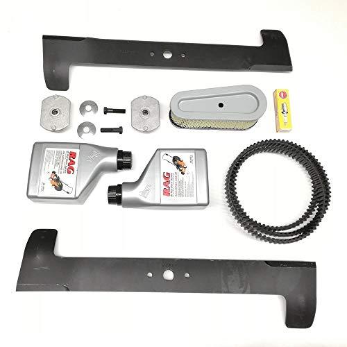 Kit de + revisión Motor Tractor y Cortacésped Twin Cut