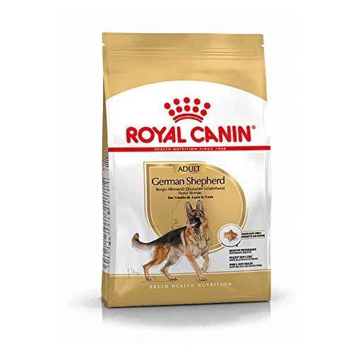 Royal Canin 35293 Breed Deutscher Schäferhund 12 kg- Hundefutter