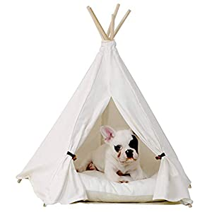 little dove Pet Teepee Dog(Puppy) & Cat Bed - Portable Pet Tents & Houses for Dog(Puppy) & Cat Beige Color 24 Inch no Cushion