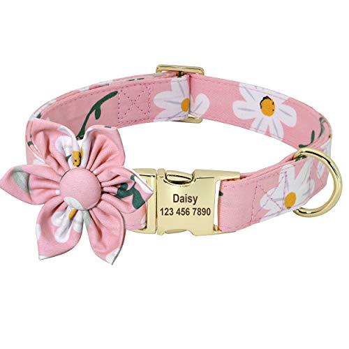 Beirui Collar de perro para niña de flores personalizado para perros- Collares de mascota con patrón floral grabado con hebilla dorada personalizada (margarita, S)