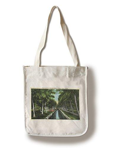 Lantern Press Miami, Florida - W J Matheson Estate Canal Scene at Coconut Grove (100% Cotton Tote Bag - Reusable)