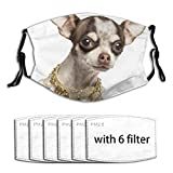 YOUMEISU Face Cover Pet Closeup Domestic Dressed Chihuahua Fancy Collar Isolated Animals Wildlife
