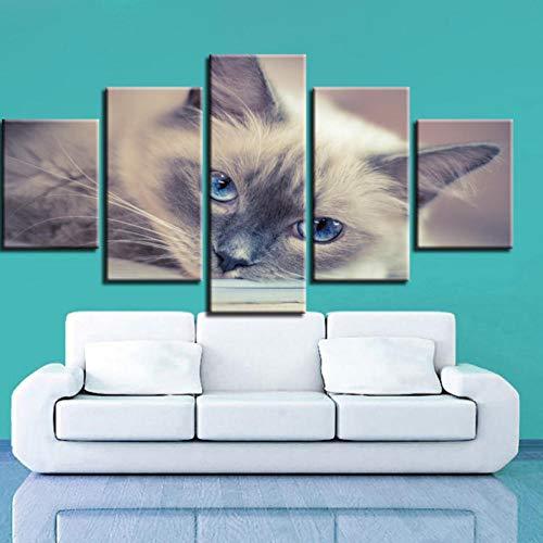 RYQRP Impresión de la Lona Gato Animal Cuadros en Lienzo - Arte Moderno Pared - HD Pintura Poster - Arte de la Pared Imágenes Decoración para Habitacion Salon, 150x80cm, 5 Piezas, Enmarcado