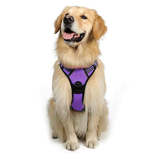 rabbitgoo No-Pull Hundegeschirr atmungsaktiv Brustgeschirr Geschirr für Hunde Welpengeschirr Reflexstreifen Sichere Führung Einstellbar Weich Lila L