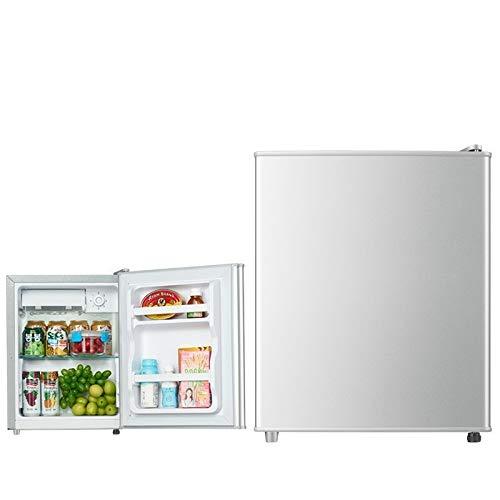 ZYC-WF Mini Refrigerador Individual de una Sola Puerta, Serie 21L, Plateado Tiene un Estante de Metal ExtraíBle Y un Estante para Botellas en la Puerta para Aumentar el Espacio de A