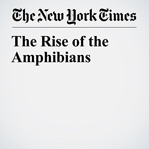 The Rise of the Amphibians copertina