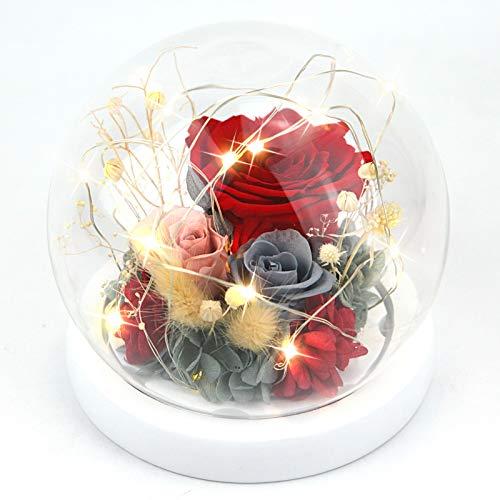 Forever Flowers - Rosas preservadas para mujer, mamá, novia, esposa, rosas auténticas frescas, regalo elegante para el día de San Valentín, cumpleaños, aniversario (rojo suerte)