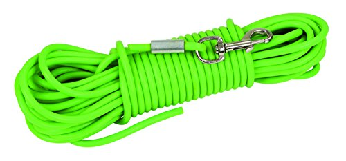 Correa larga de adiestramiento PVC, 15m, verde